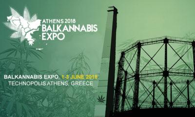 Balkannabis - expo