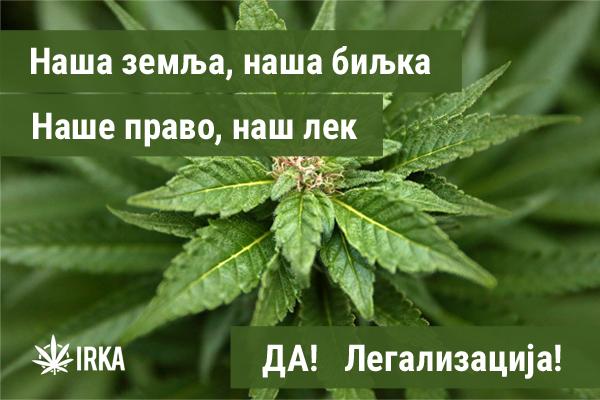 glavnaSlika