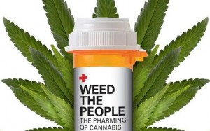 weed-the-people2